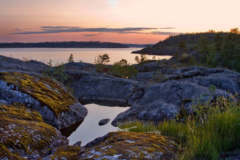 In Russia un parco naturale, a tutela della foca del Ladoga e le biodiversità