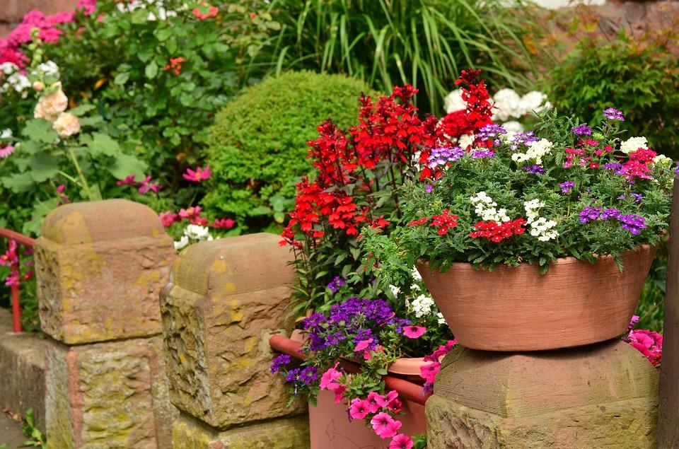 Eco Bonus: incentivi per l'acquisto di piante da parte di privati