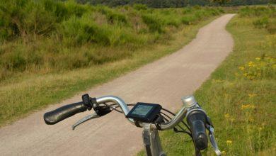 Dalla città al mare in bicicletta: inaugurata la Greenway del Sile