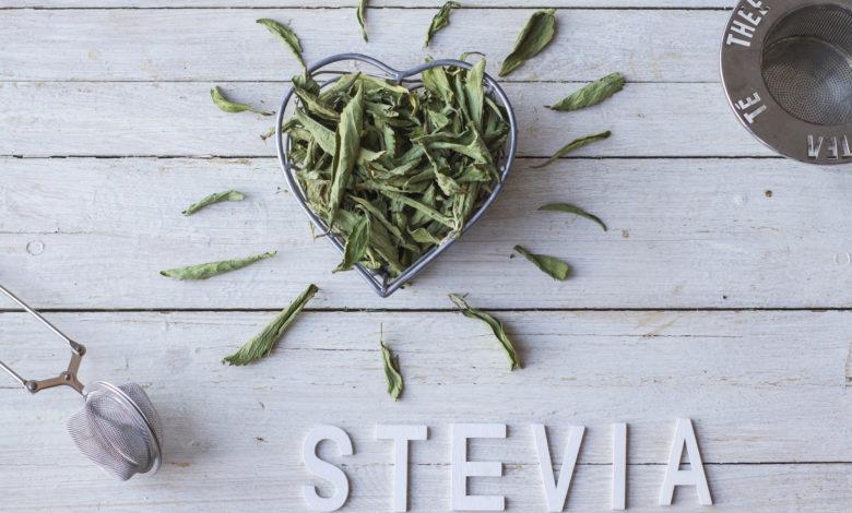 Stevia, il dolcificante naturale adatto ai diabetici. Usi e proprietà