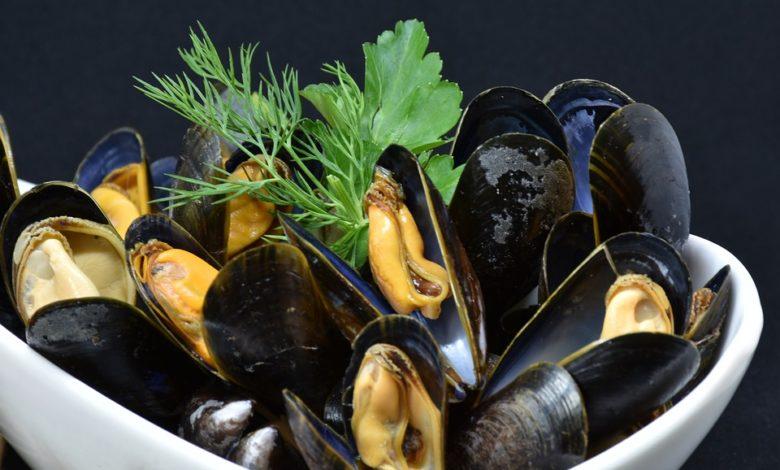 Allarme alimentare: cozze contaminate da escherichia coli in Italia