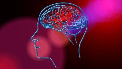 Alzheimer: scoperto il meccanismo del cervello che danneggia la memoria