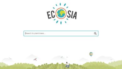 Cresce Ecosia, il motore di ricerca che pianta alberi
