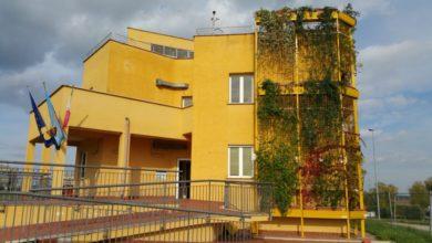 Le pareti verdi per isolare gli edifici e risparmiare: il progetto di Enea