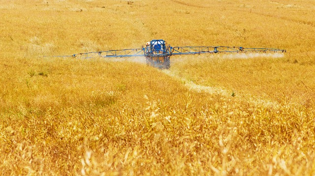 Scoperta shock dei ricercatori francesi: i pesticidi causano obesità e diabete