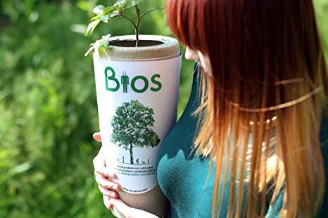 Urne Biodegradabili