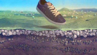 Mais e cotone per le prime scarpe biodegradabili di Reebok