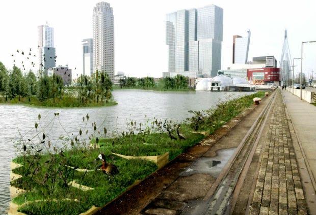 Inaugurato a Rotterdam un parco galleggiante fatto di plastica riciclata