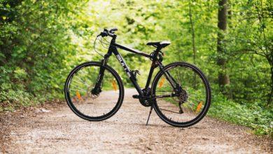 Nei Castelli Romani in bicicletta: nasce un nuovo percorso ciclabile