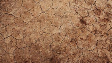 I rischi del surriscaldamento globale per l'Italia: cosa si può fare