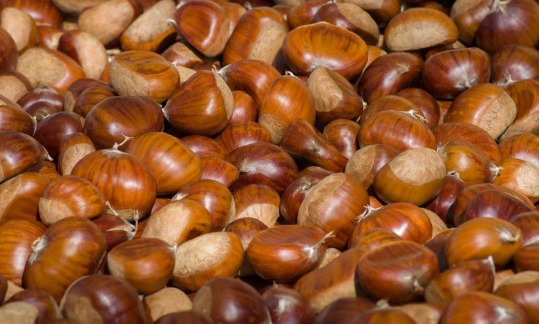 Le castagne, cibo dell'autunno: le proprietà nutrizionali