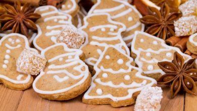 Biscotti zenzero e cannella, la ricetta di un dolce natalizio