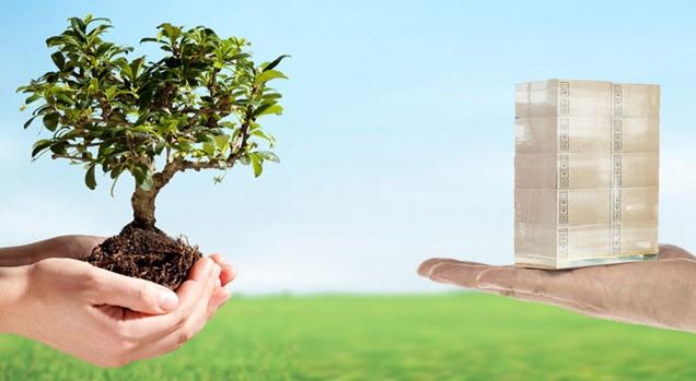 Packaging sostenibile: prodotto da scarti alimentari, aiuta il pianeta