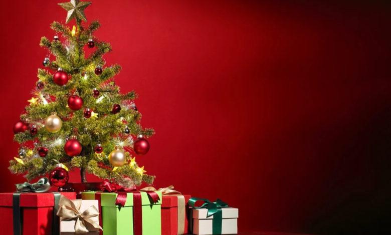 Albero Natale Ecologico