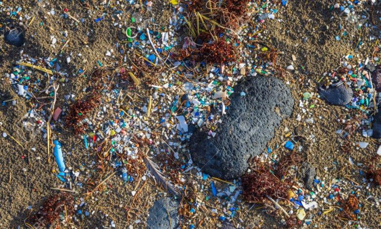 Mareggiata Plastica
