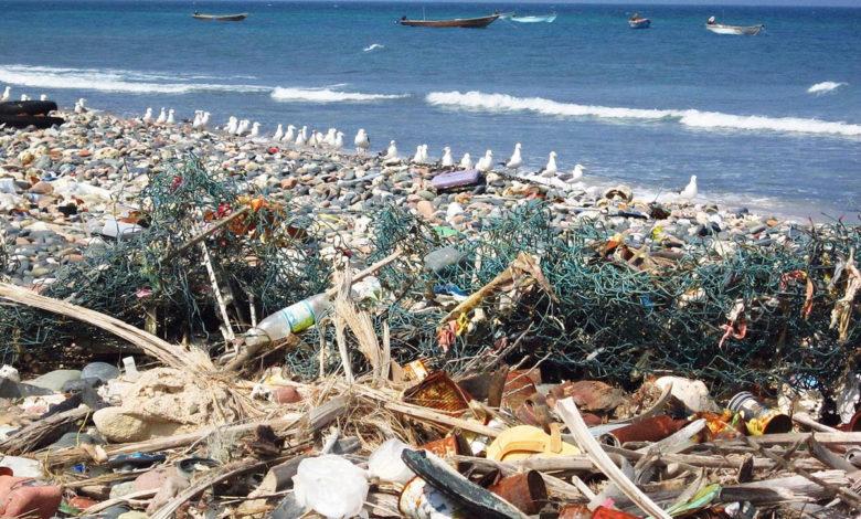 Bali Plastica