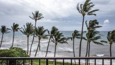 Tempeste Tropicali