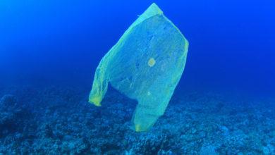 Vietnam Plastica