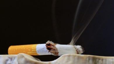 Passeri Mozziconi Sigaretta