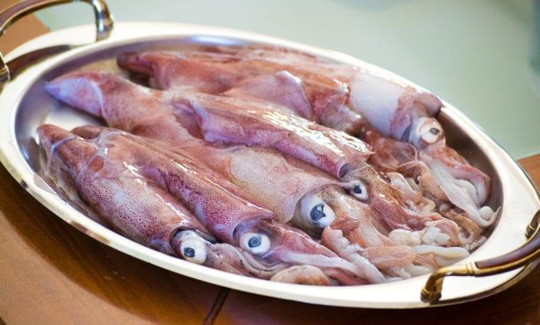 Calamari Sanremese