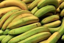 Snack Banane Avena
