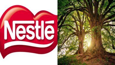 Nestlé strategia sostenibile deforestazione
