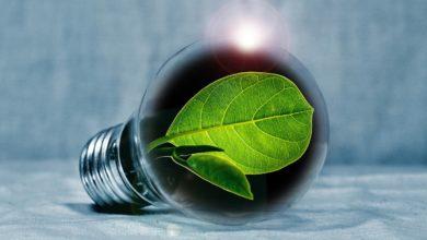 PNRR investimenti transizione ecologica