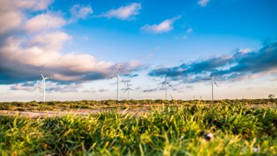energia fonti rinnovabili