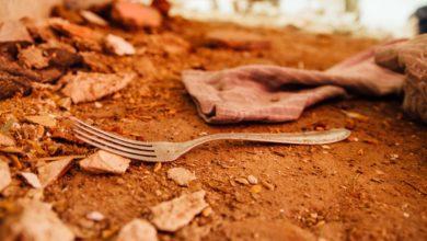 Agenda 2030 Sviluppo Sostenibile secondo obiettivo sconfiggere la fame
