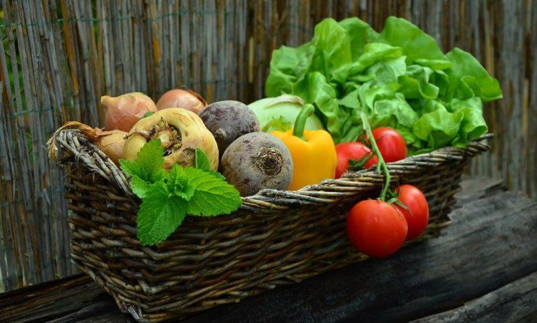 Giornata Internazionale Consapevolezza sugli Sprechi e Perdita Alimentari