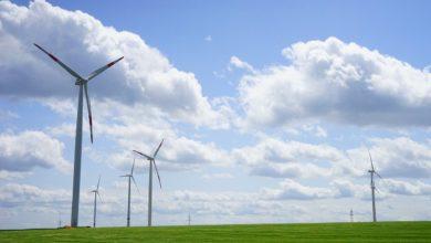 IEA transizione ecologica lenta